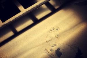 Workshop - footprint